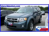 2010 Steel Blue Metallic Ford Escape XLT V6 #19356506