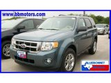 2010 Steel Blue Metallic Ford Escape XLT #19356508