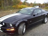 2007 Black Ford Mustang GT Premium Coupe #19526663