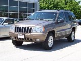 2002 Woodland Brown Satin Glow Jeep Grand Cherokee Limited 4x4 #195266