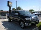 2010 Black Toyota Tundra Platinum CrewMax 4x4 #19703719