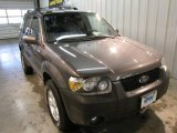 2006 Dark Shadow Grey Metallic Ford Escape XLT V6 4WD #19831962