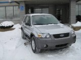 2006 Silver Metallic Ford Escape XLT V6 #1990327