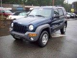 2002 Patriot Blue Pearlcoat Jeep Liberty Sport 4x4 #19953573
