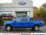 2010 Blue Flame Metallic Ford F150 XLT SuperCrew 4x4 #19977784