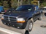 2004 Graphite Metallic Dodge Dakota Sport Quad Cab 4x4 #20009593