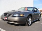 2001 Mineral Grey Metallic Ford Mustang V6 Coupe #20076757
