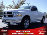2010 Dodge Ram 1500 SLT Regular Cab Data, Info and Specs