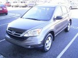 2010 Urban Titanium Metallic Honda CR-V LX AWD #20146267