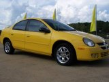 2003 Solar Yellow Dodge Neon SXT #20219656