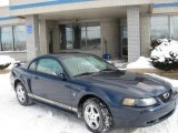 2002 True Blue Metallic Ford Mustang V6 Coupe #2023854
