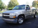 2002 Light Pewter Metallic Chevrolet Silverado 1500 Work Truck Regular Cab #20241281