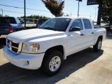 2010 Stone White Dodge Dakota ST Crew Cab #20241828