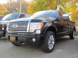 2010 Tuxedo Black Ford F150 Platinum SuperCrew 4x4 #20246119