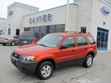 2006 Blazing Copper Metallic Ford Escape XLS 4WD #20531162