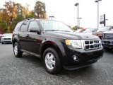 2009 Black Ford Escape XLT #20607170