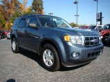 2010 Steel Blue Metallic Ford Escape XLT V6 #20659766