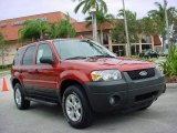 2006 Blazing Copper Metallic Ford Escape XLT #2084905