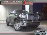 2010 Black Toyota Tundra Platinum CrewMax 4x4 #21071115