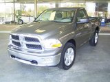 2010 Mineral Gray Metallic Dodge Ram 1500 SLT Regular Cab 4x4 #21136849
