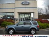 2010 Steel Blue Metallic Ford Escape XLT 4WD #21118918