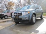 2010 Steel Blue Metallic Ford Escape XLT V6 4WD #21137523