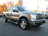 2010 Sterling Grey Metallic Ford F150 STX SuperCab #21233135