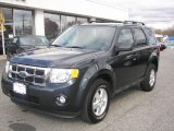 2009 Black Pearl Slate Metallic Ford Escape XLT 4WD #21234082
