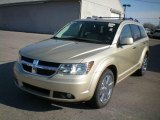 Dodge Journey 2010 Data, Info and Specs