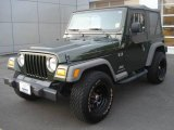 2006 Jeep Green Metallic Jeep Wrangler X 4x4 #21373854
