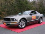 2005 Mineral Grey Metallic Ford Mustang V6 Premium Coupe #21454611