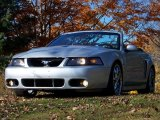 2003 Silver Metallic Ford Mustang Cobra Convertible #21631553