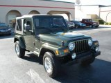 2006 Jeep Green Metallic Jeep Wrangler X 4x4 #21626498