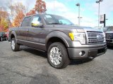 2010 Sterling Grey Metallic Ford F150 Platinum SuperCrew 4x4 #21625544
