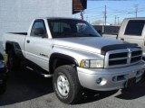 2001 Bright Silver Metallic Dodge Ram 1500 Sport Regular Cab 4x4 #21706156
