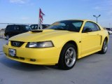 2002 Zinc Yellow Ford Mustang GT Coupe #21779131