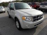 2009 Brilliant Silver Metallic Ford Escape XLT V6 #21773793