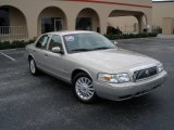 2009 Silver Birch Metallic Mercury Grand Marquis LS Ultimate Edition #21771374