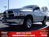 2010 Bright Silver Metallic Dodge Ram 1500 ST Regular Cab #21933551