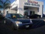 2005 Medium Gray Metallic Chevrolet Malibu Maxx LS Wagon #21940454