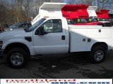 2010 Oxford White Ford F350 Super Duty XL Regular Cab Chassis #21991614