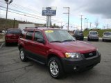 2006 Redfire Metallic Ford Escape XLT V6 4WD #21997383