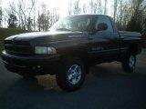 2001 Black Dodge Ram 1500 Sport Regular Cab 4x4 #22139383