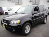 2006 Black Ford Escape Limited 4WD #22198738