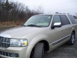 2007 Light French Silk Metallic Lincoln Navigator Luxury 4x4 #22199307