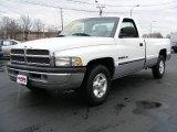 1999 Bright White Dodge Ram 1500 SLT Regular Cab #22286265