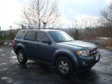 2010 Steel Blue Metallic Ford Escape XLT #22294866