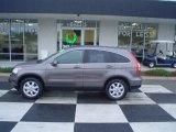 2009 Urban Titanium Metallic Honda CR-V EX-L #22326851