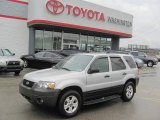 2006 Silver Metallic Ford Escape XLT V6 4WD #22269806