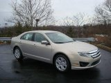 2010 Smokestone Metallic Ford Fusion SE #22294836